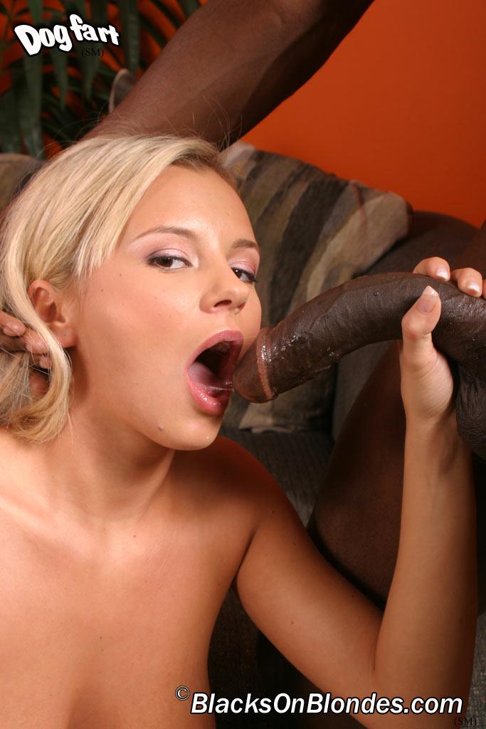 Bree olson big black cock